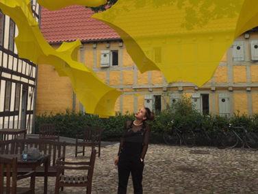 Aarhaus Elective